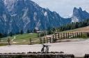 Bei Mountainbikern beliebt, die Plätzwiese
