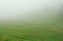 Wanderer irren durch den Nebel