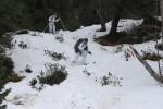 Abfahrten im schwierigen Gelände - durch Wälder bei schlechtem Schnee